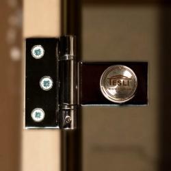 """Двери в хамам Tesli """"Сезам"""" выбор размера"""