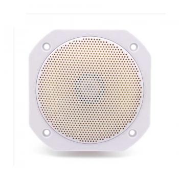 Термостойкая колонка для сауны, бани Visaton FRS 10 WP, белый цвет